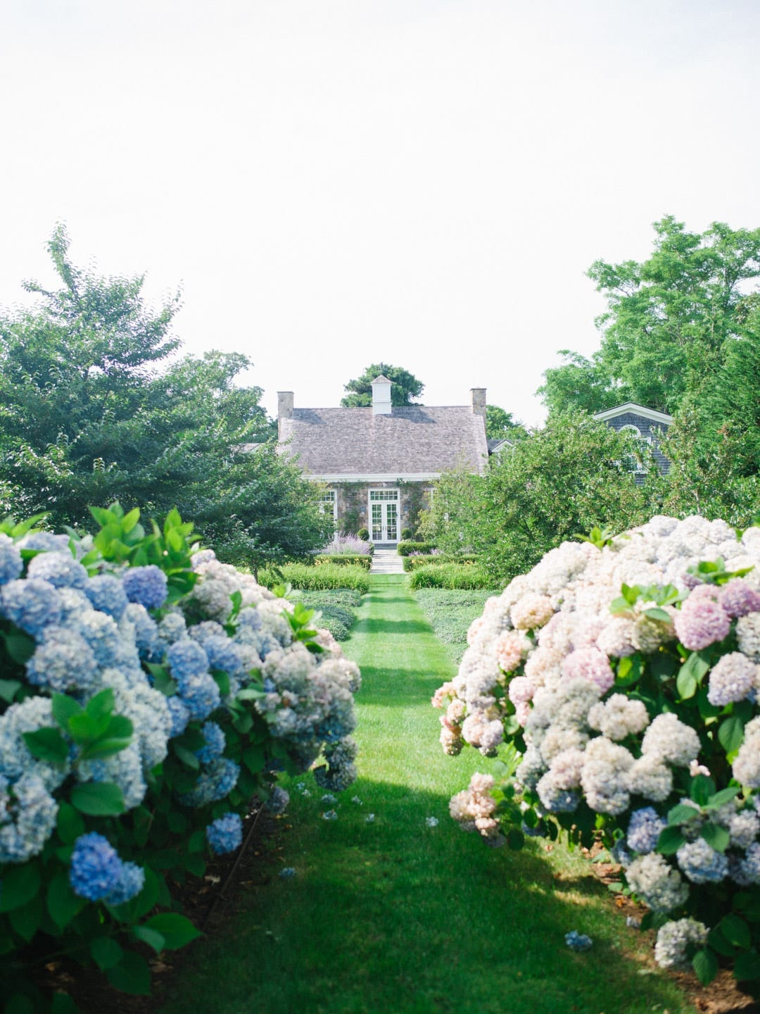 Martha's Vineyard Guide - New England style home surrounded by hydrangeas
